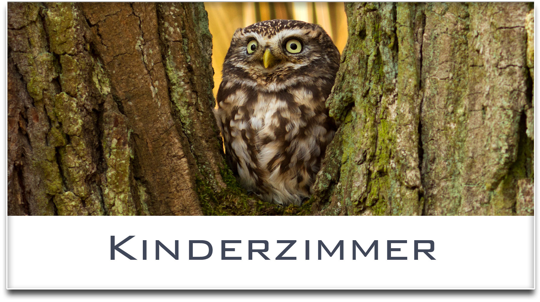 Türschild / Haustürschild / Eule / Kinderzimmer / Selbstklebend