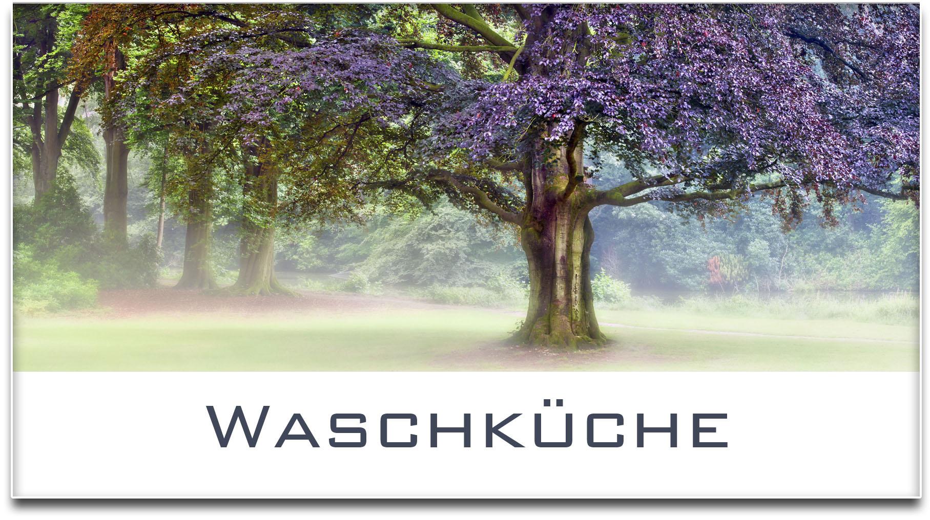 Türschild / Haustürschild / Blutbuche / Baum / Waschküche / Selbstklebend
