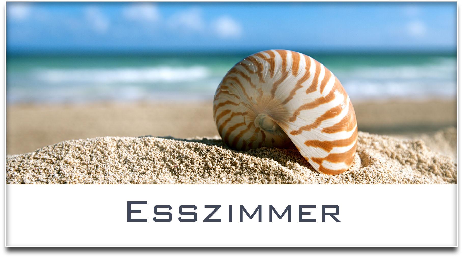 Türschild / Haustürschild / Muschel / Strand / Esszimmer / Selbstklebend