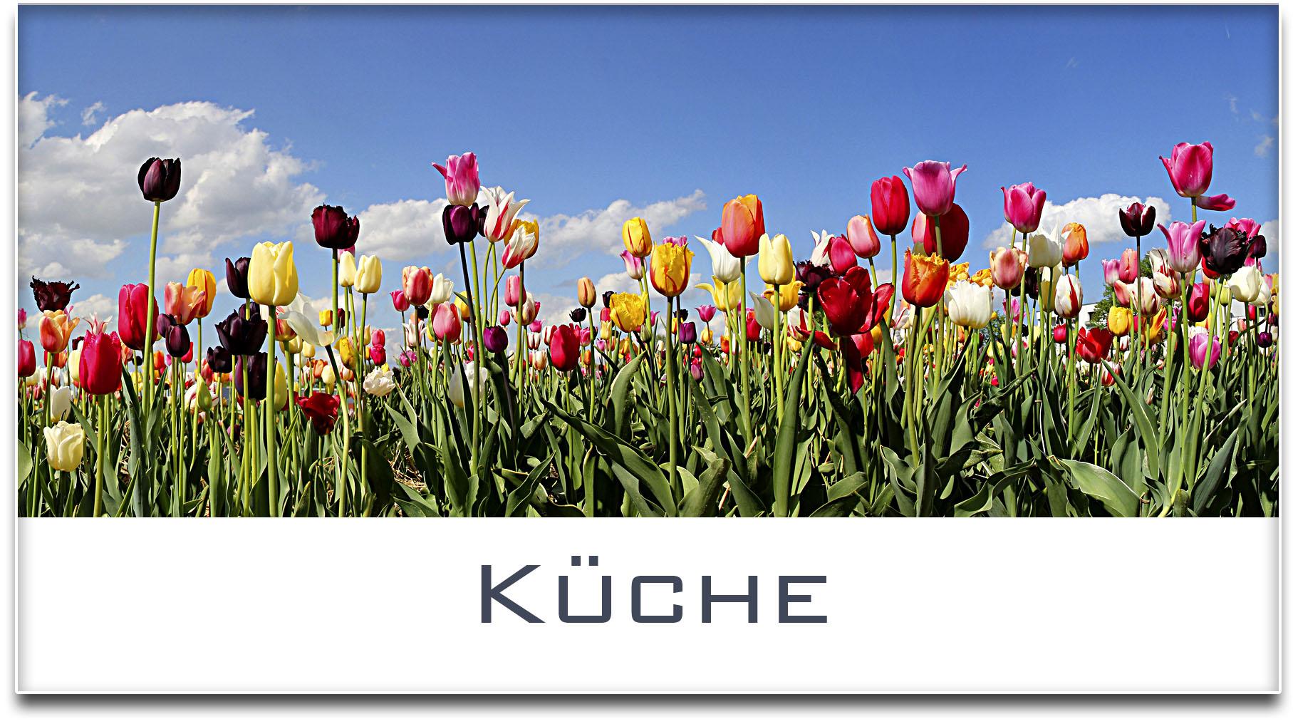 Türschild / Haustürschild / Tulpenfeld / Küche / Selbstklebend