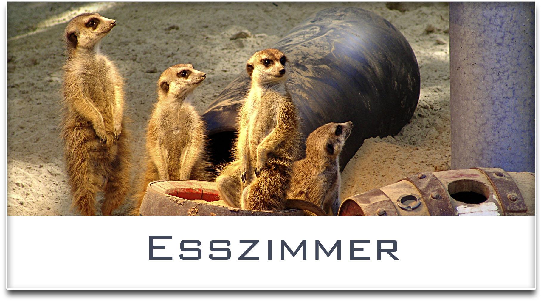 Türschild / Haustürschild / Erdmännchen / Esszimmer / Selbstklebend