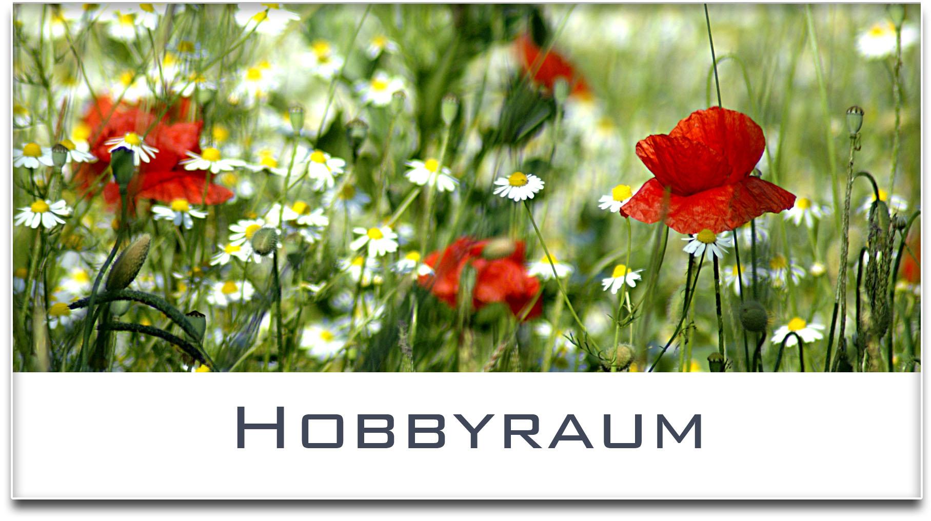 Türschild / Haustürschild / Blumenwiese / Hobbyraum / Selbstklebend