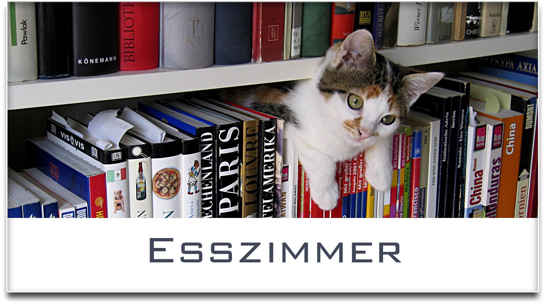Türschild / Haustürschild / Katze / Bücherregal / Esszimmer / Selbstklebend