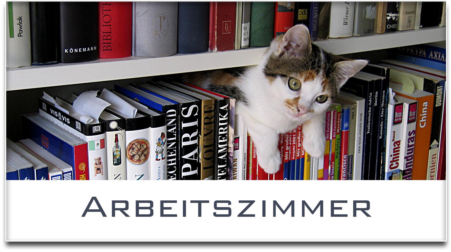 Türschild / Haustürschild / Katze / Bücherregal / Arbeitszimmer / Selbstklebend