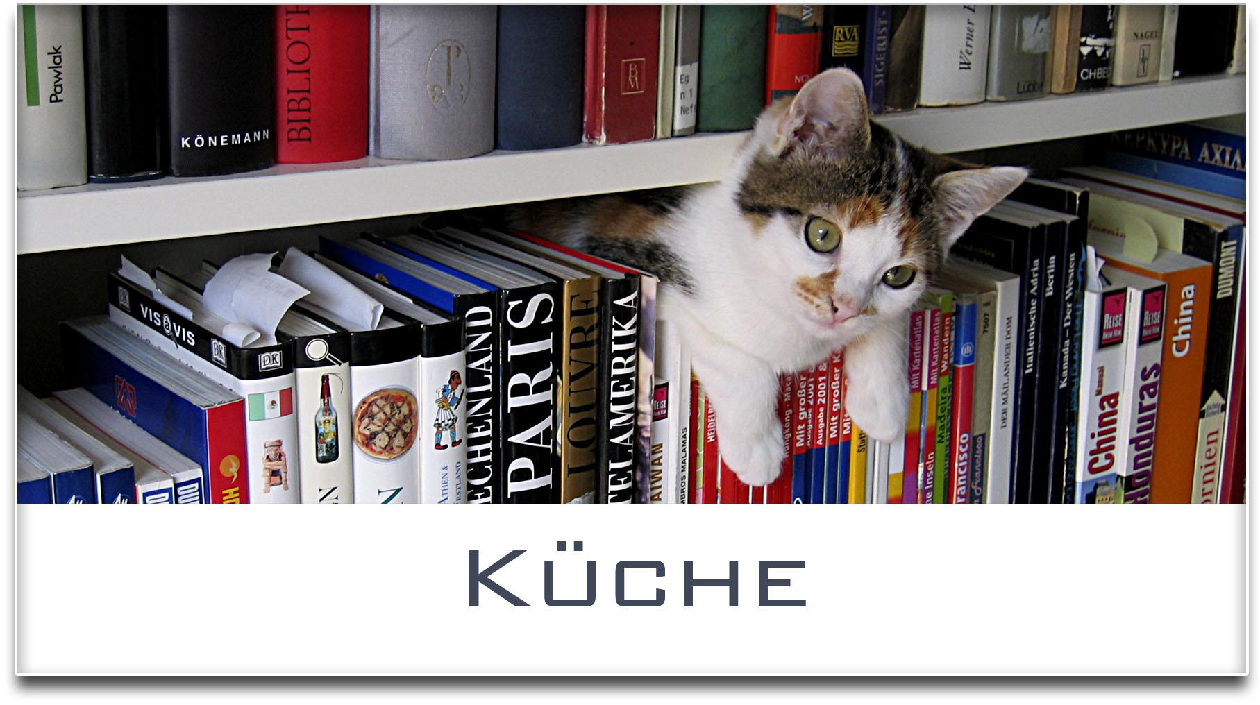 Türschild / Haustürschild / Katze / Bücherregal / Küche / Selbstklebend