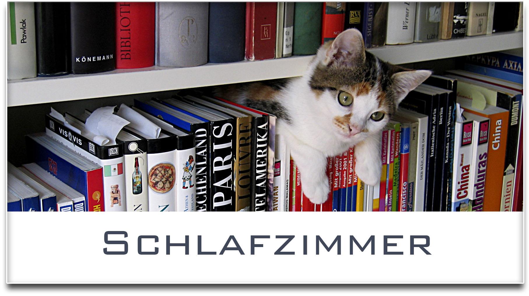 Türschild / Haustürschild / Katze / Bücherregal / Schlafzimmer / Selbstklebend