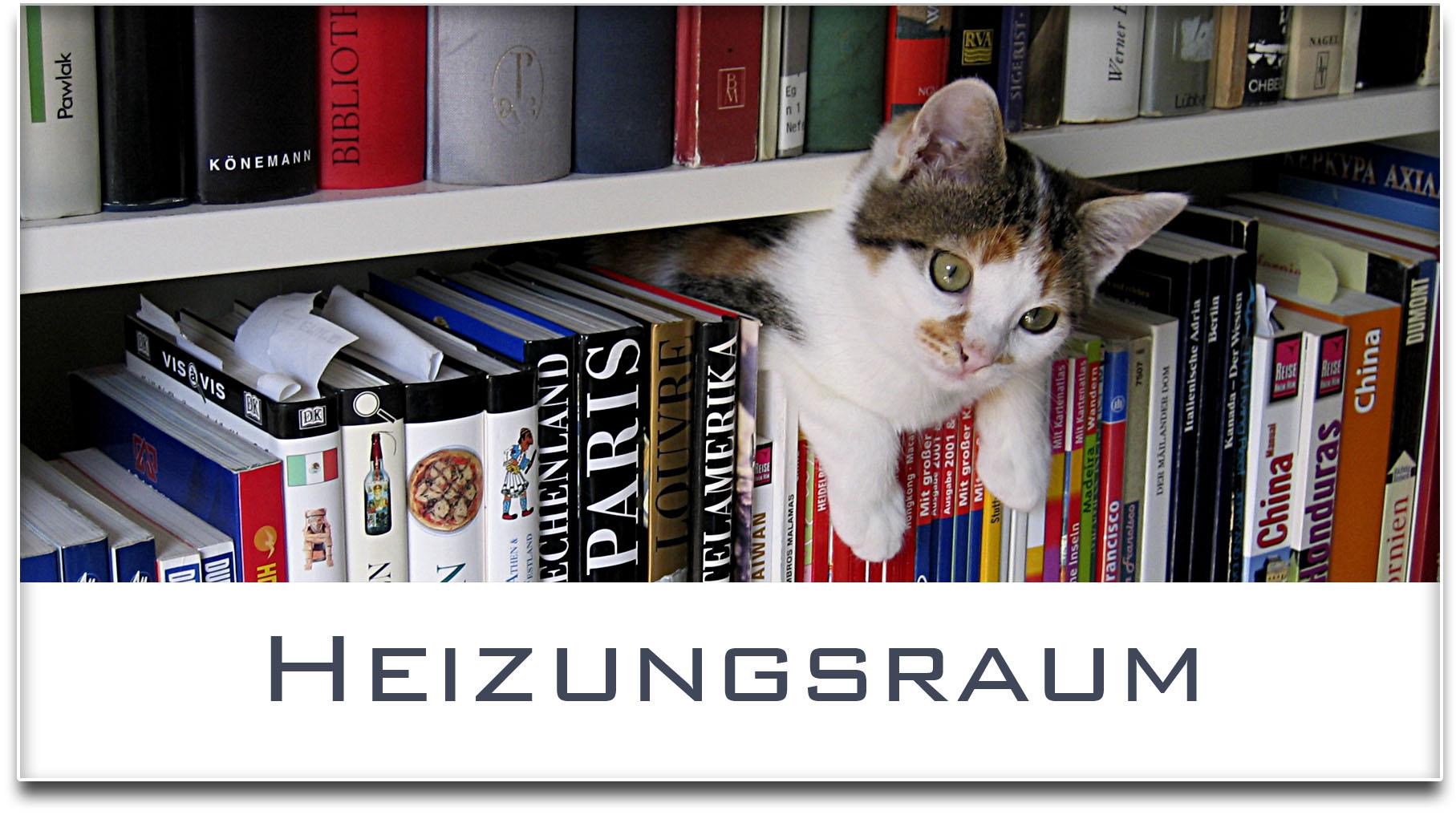 Türschild / Haustürschild / Katze / Bücherregal / Heizungsraum / Selbstklebend