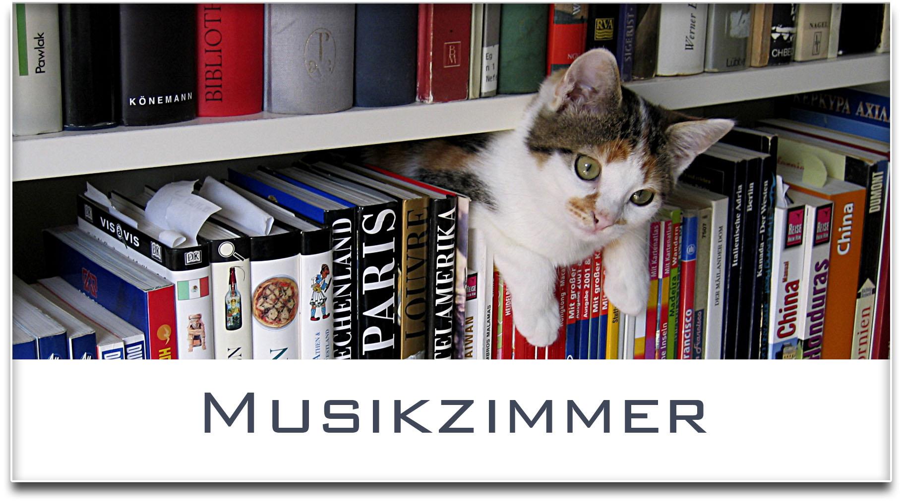 Türschild / Haustürschild / Katze / Bücherregal / Musikzimmer / Selbstklebend