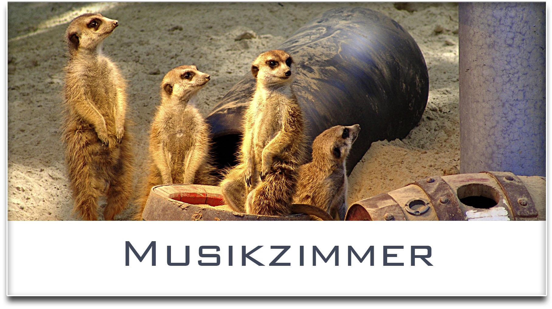 Türschild / Haustürschild / Erdmännchen / Musikzimmer / Selbstklebend
