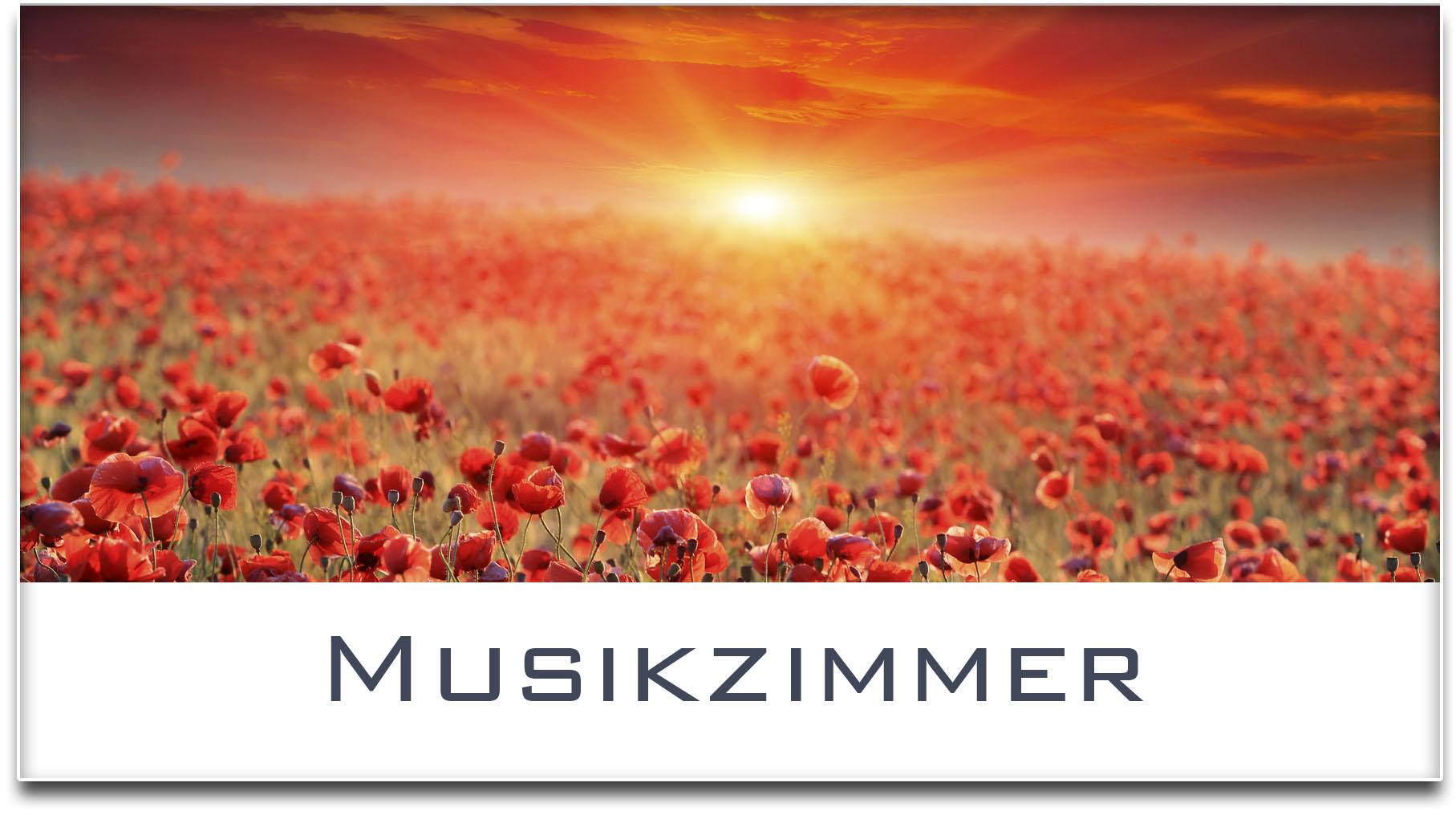 Türschild / Mohnfeld / Sonnenuntergang / Musikzimmer / Selbstklebend