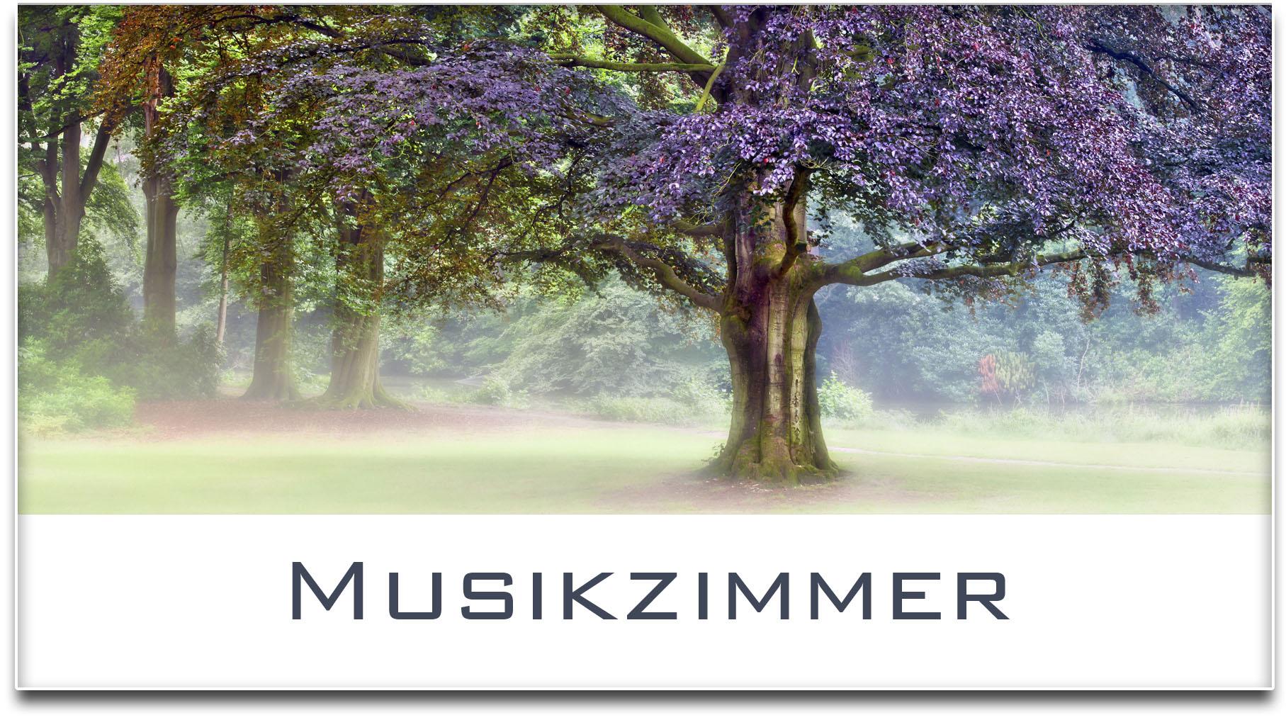 Türschild / Haustürschild / Blutbuche / Baum / Musikzimmer / Selbstklebend