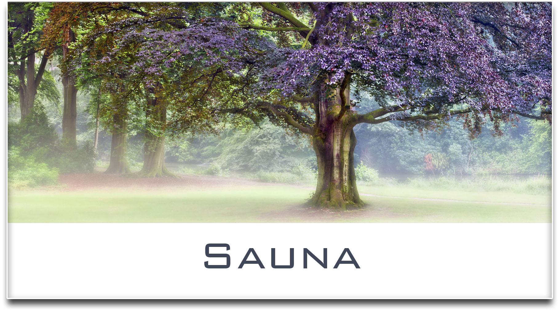 Türschild / Haustürschild / Blutbuche / Baum / Sauna / Selbstklebend