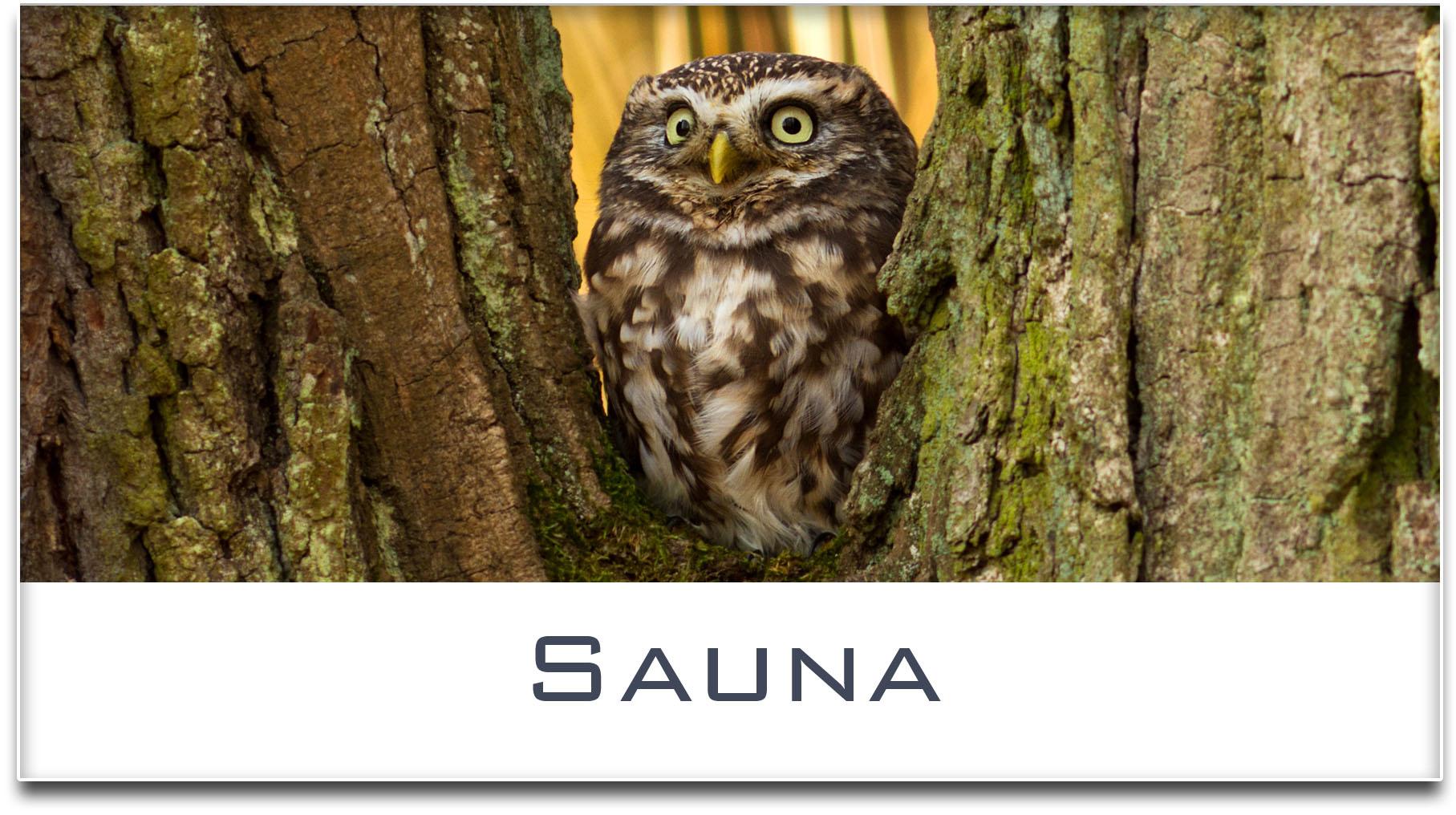 Türschild / Haustürschild / Eule / Sauna / Selbstklebend