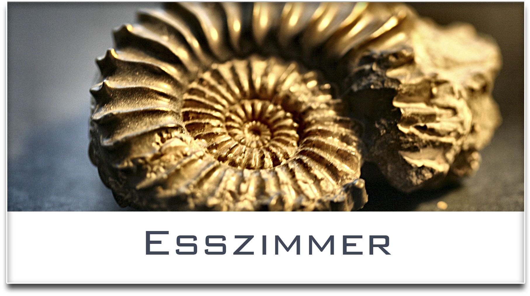 Türschild / Haustürschild / Versteinerte Muschel / Esszimmer / Selbstklebend
