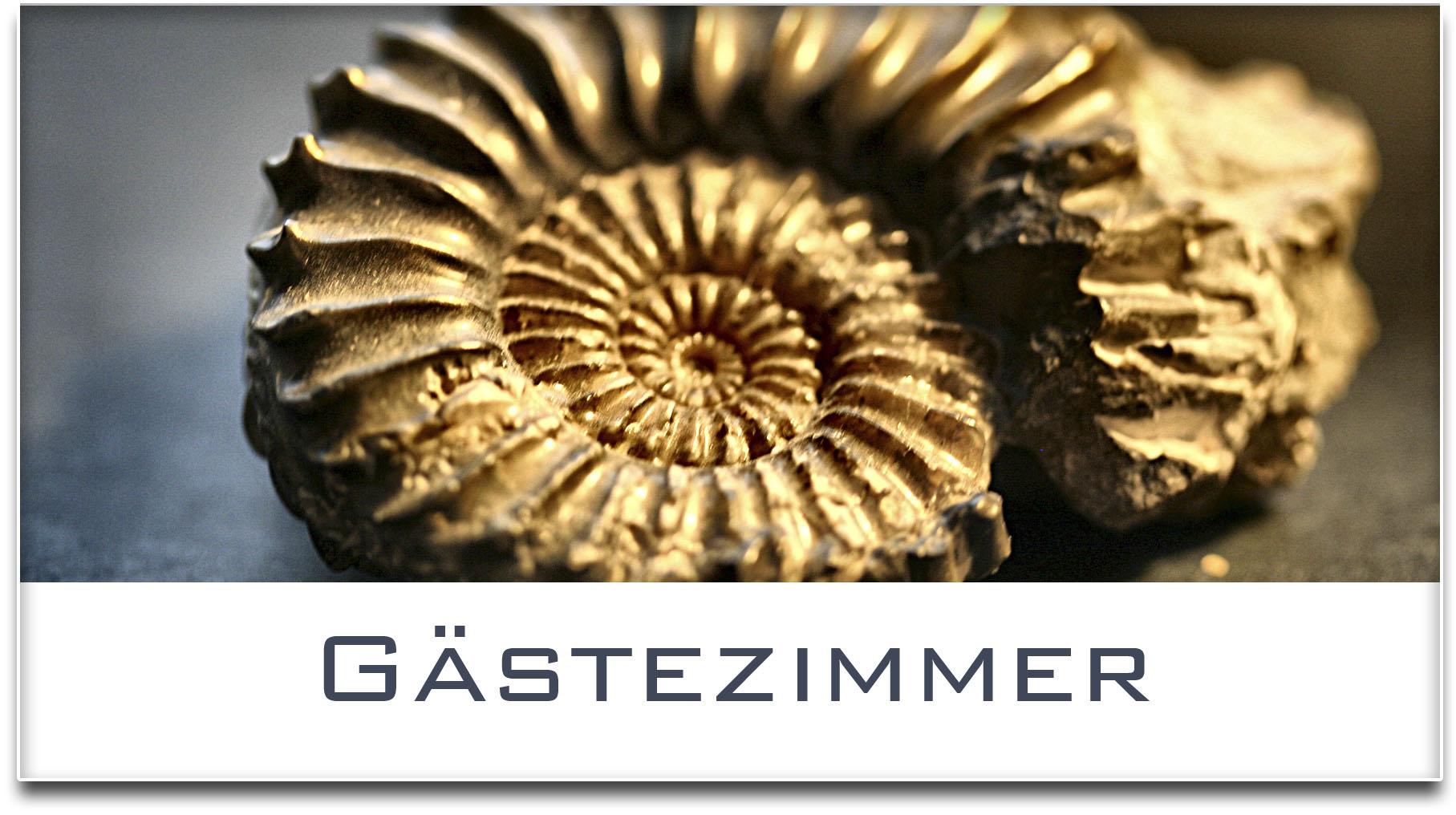 Türschild / Haustürschild / Versteinerte Muschel / Gästezimmer / Selbstklebend