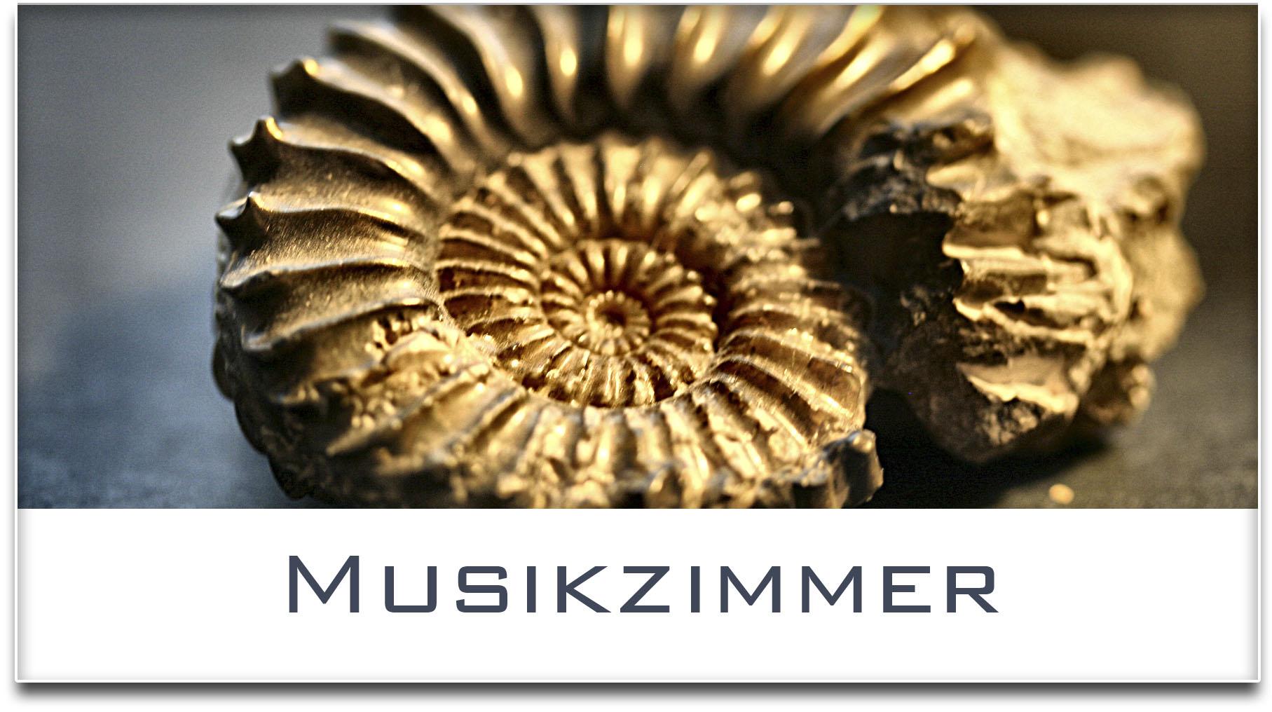 Türschild / Haustürschild / Versteinerte Muschel / Musikzimmer / Selbstklebend