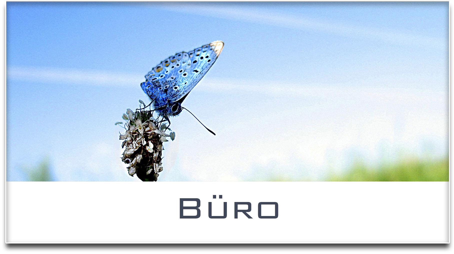 Türschild / Haustürschild / Schmetterling / Büro / Selbstklebend
