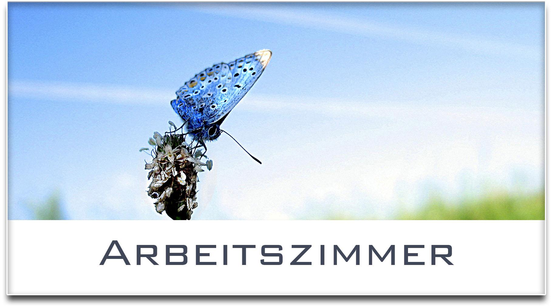 Türschild / Haustürschild / Schmetterling / Arbeitszimmer / Selbstklebend