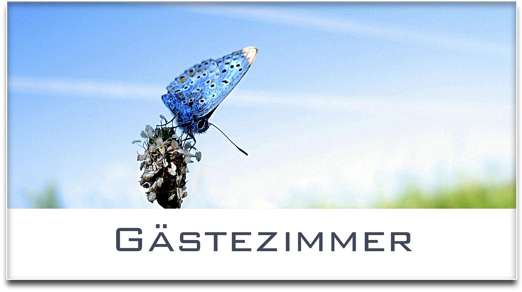 Türschild / Haustürschild / Schmetterling / Gästezimmer / Selbstklebend
