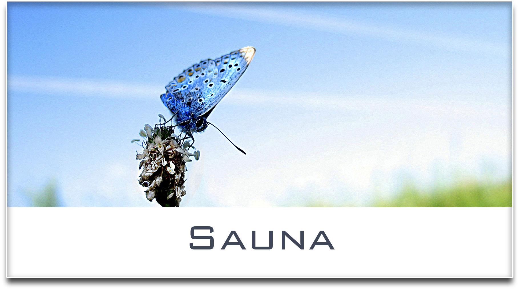 Türschild / Haustürschild / Schmetterling / Sauna / Selbstklebend
