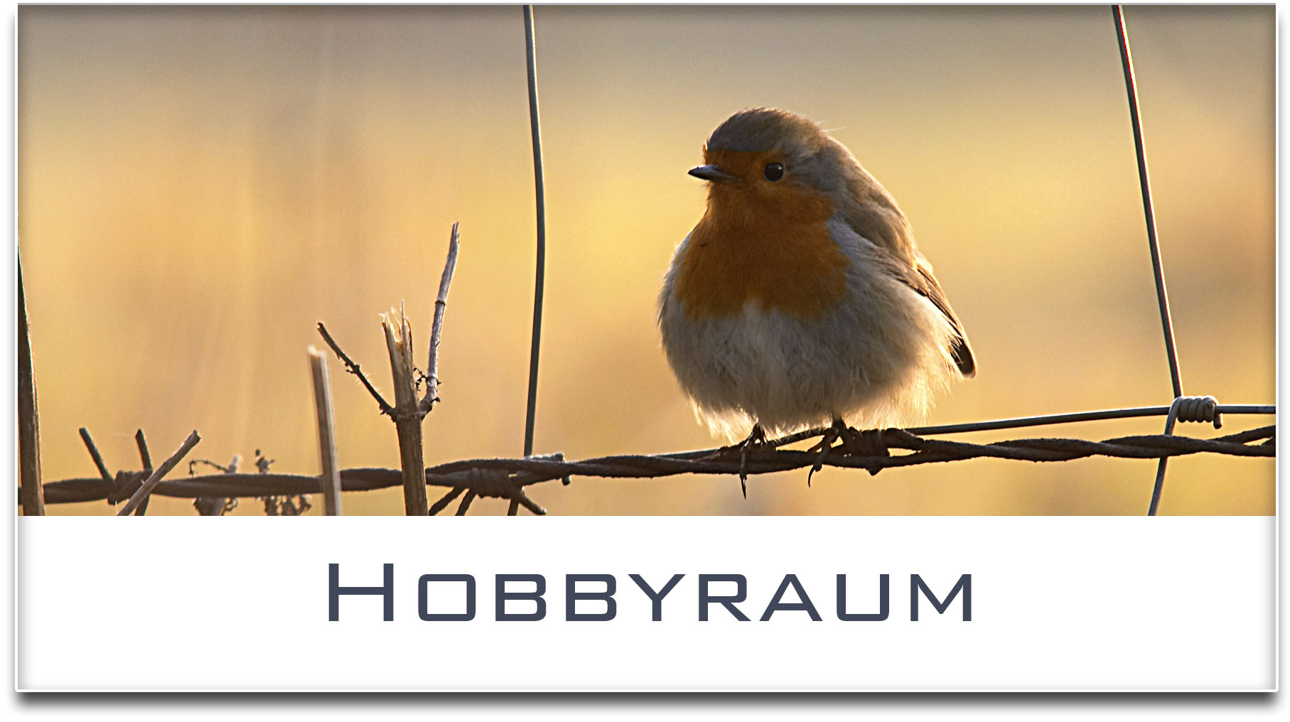 Türschild / Haustürschild / Rotkehlchen / Hobbyraum / Selbstklebend