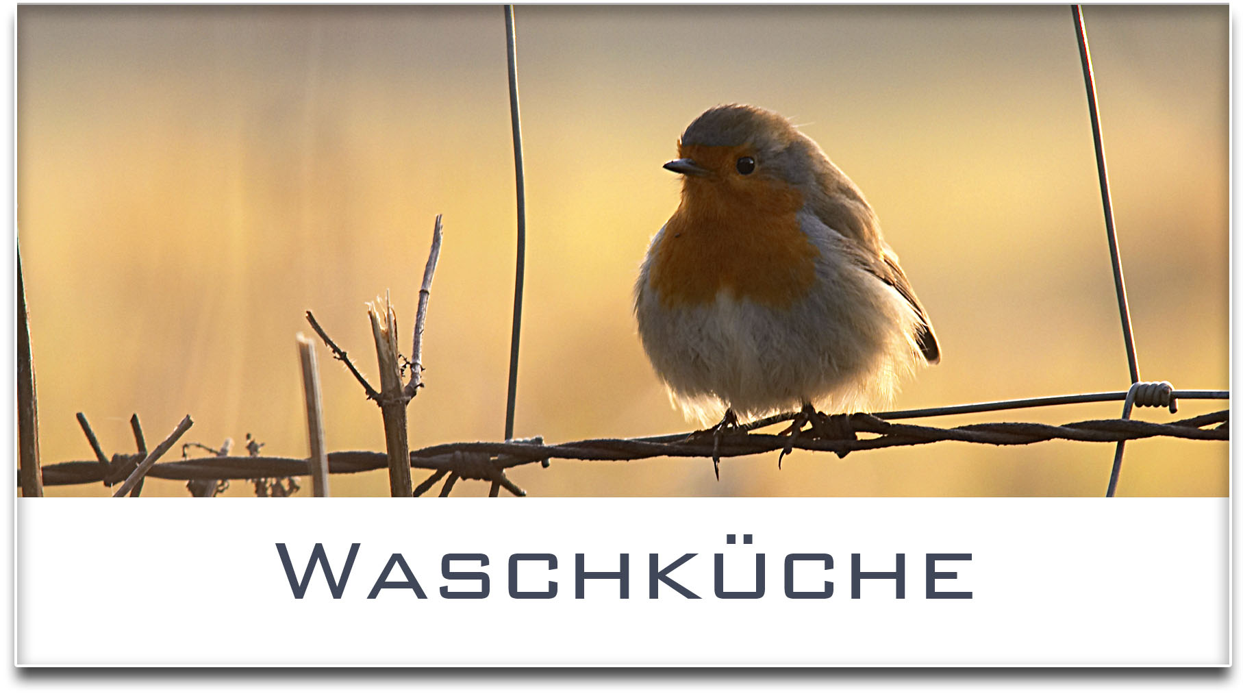 Türschild / Haustürschild / Rotkehlchen / Waschküche / Selbstklebend