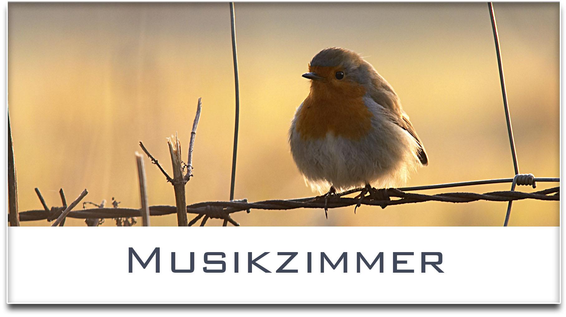 Türschild / Haustürschild / Rotkehlchen / Musikzimmer / Selbstklebend