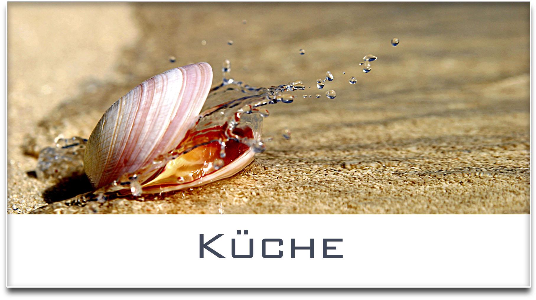 Türschild / Haustürschild / Muschel / Küche / Selbstklebend
