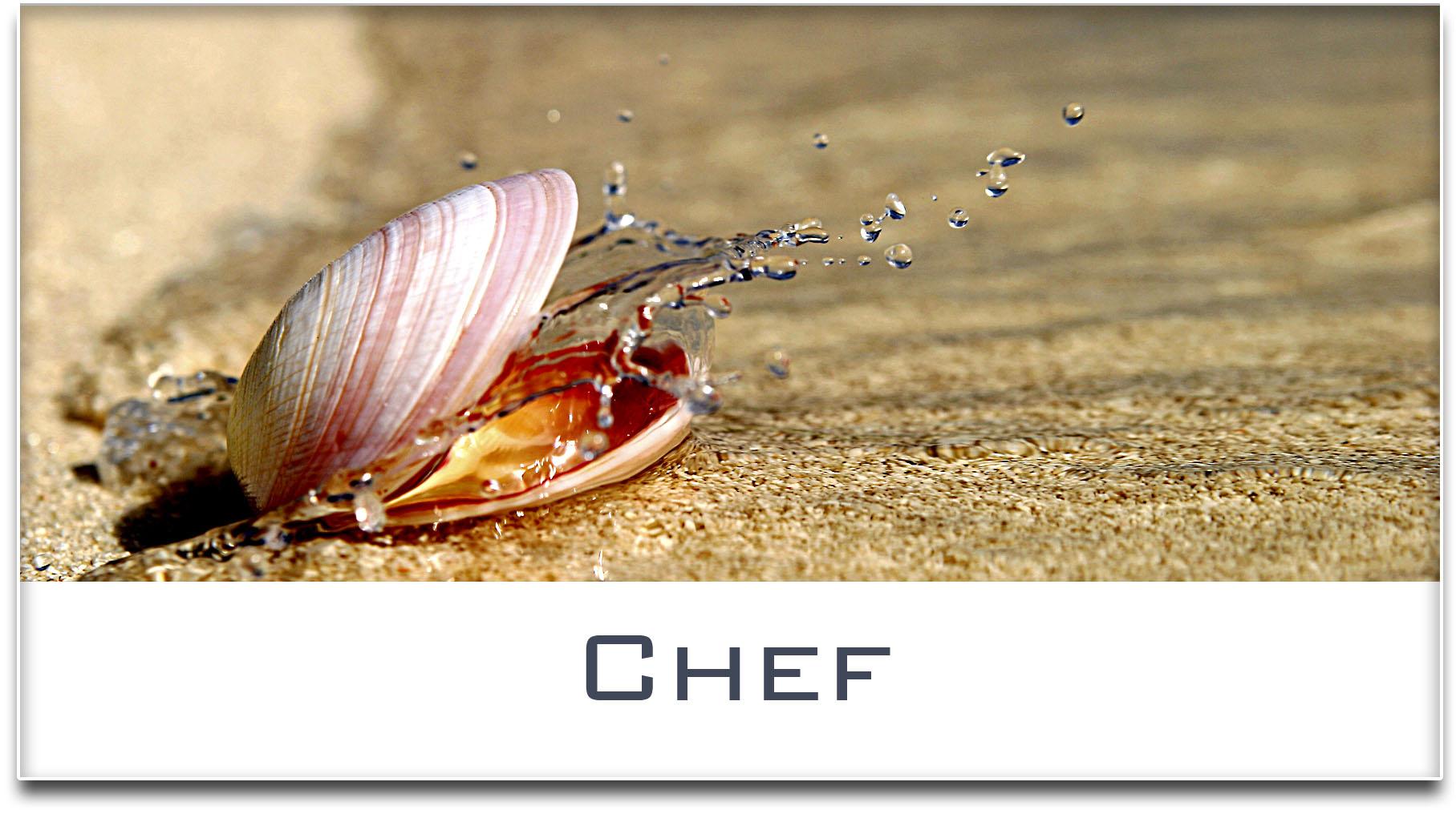Türschild / Haustürschild / Muschel / Chef / Selbstklebend