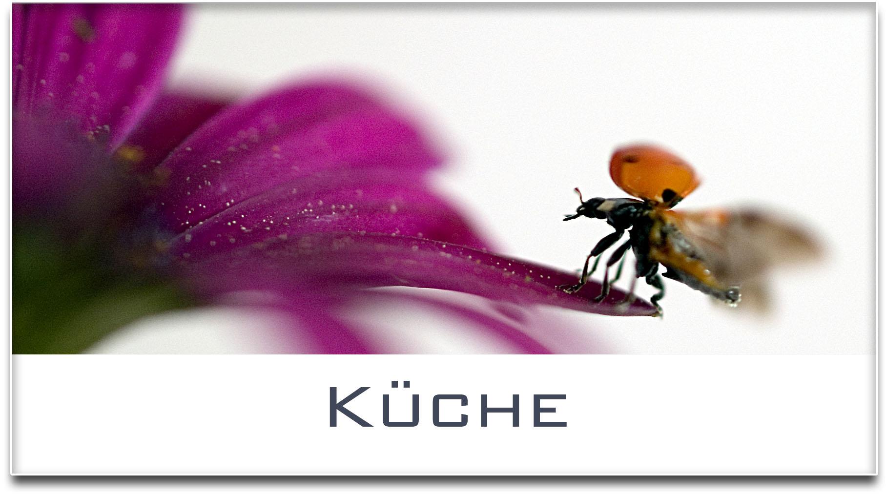 Türschild / Haustürschild / Marienkäfer / Küche / Selbstklebend