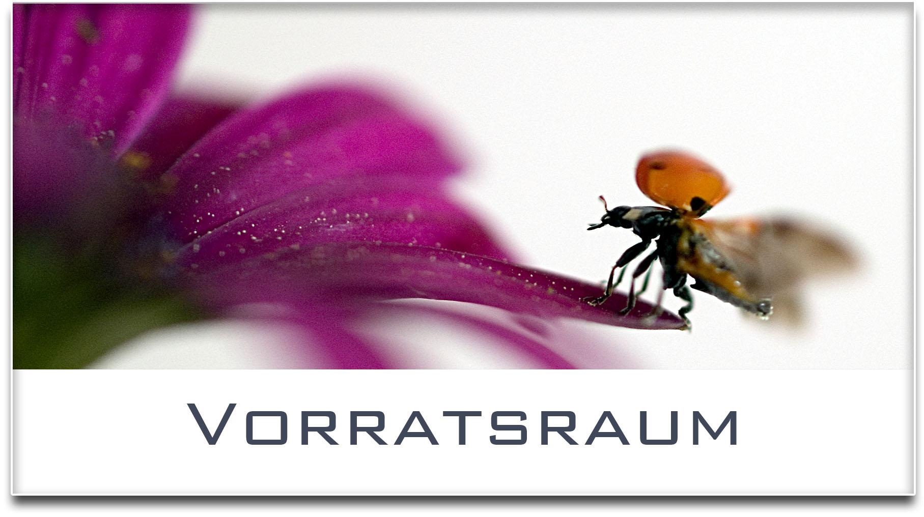Türschild / Haustürschild / Marienkäfer / Vorratsraum / Selbstklebend