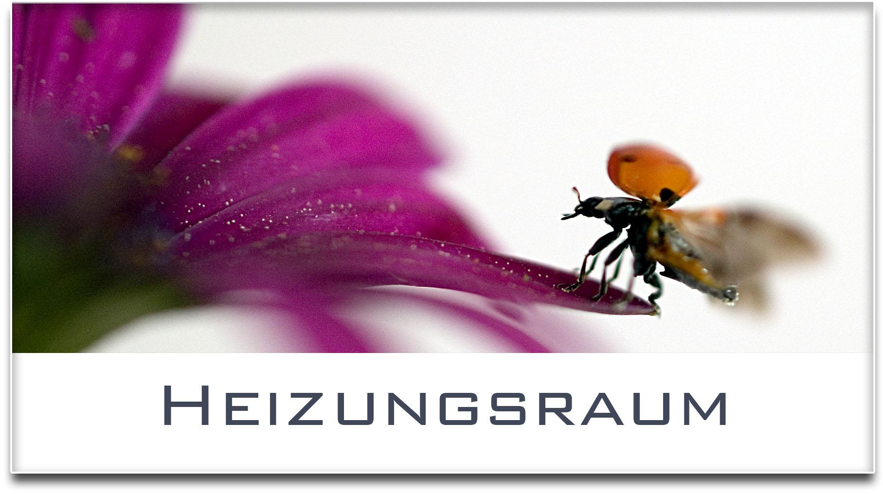 Türschild / Haustürschild / Marienkäfer / Heizungsraum / Selbstklebend