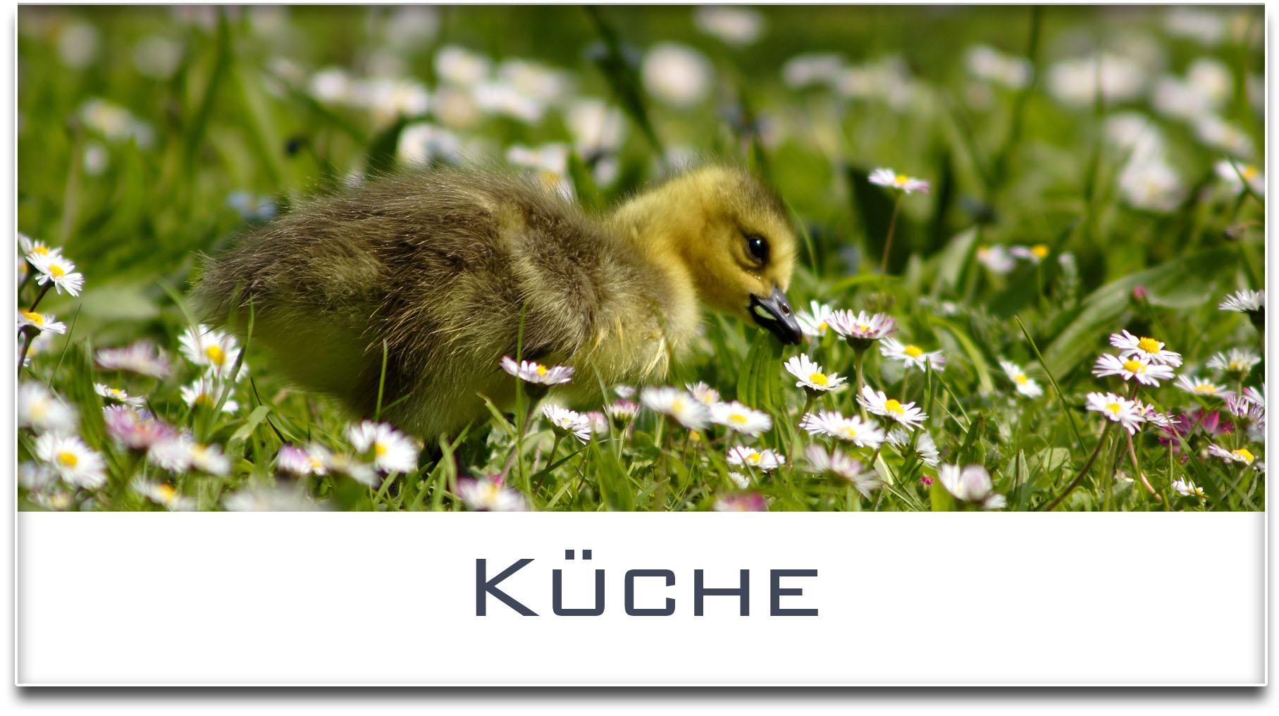 Türschild / Haustürschild / Entenküken / Küche / Selbstklebend