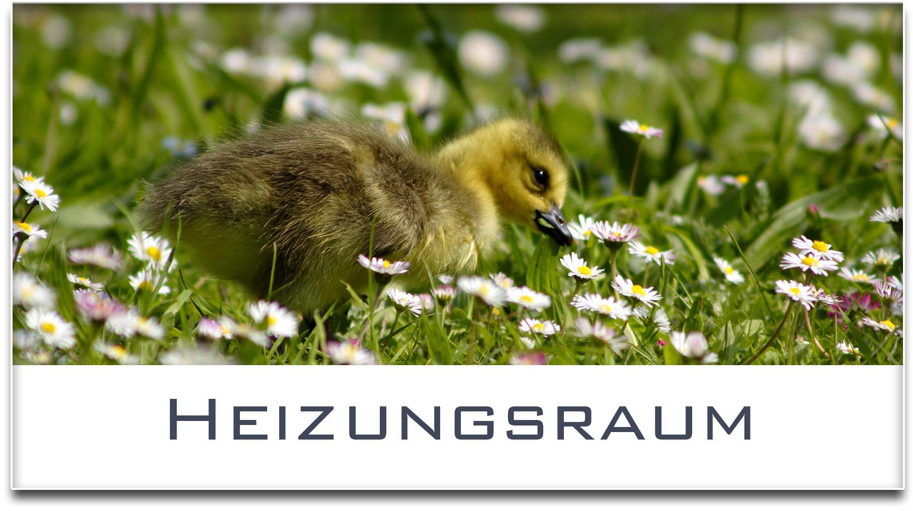 Türschild / Haustürschild / Entenküken / Heizungsraum / Selbstklebend