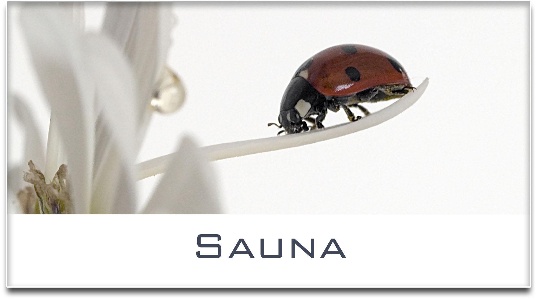 Türschild / Haustürschild / Marienkäfer / Sauna / Selbstklebend