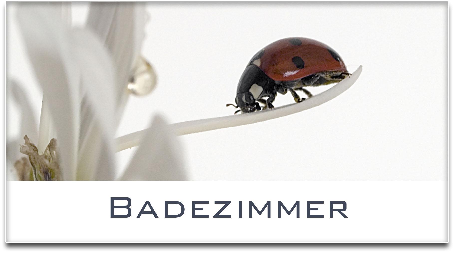 Türschild / Haustürschild / Marienkäfer / Badezimmer / Selbstklebend