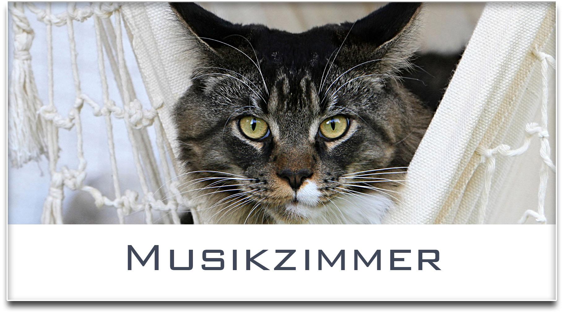 Türschild / Haustürschild / Katze / Musikzimmer / Selbstklebend