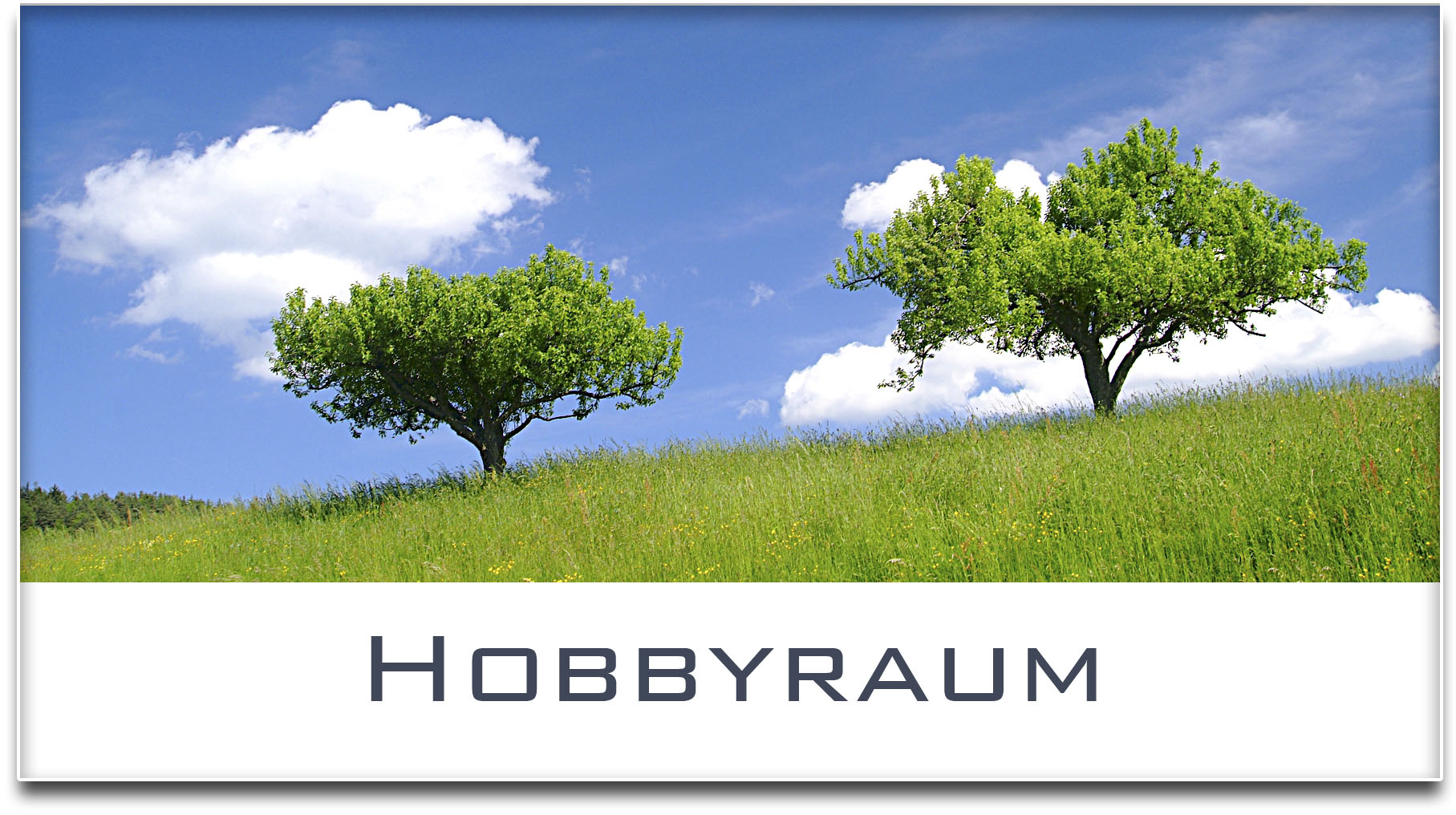 Türschild / Haustürschild / Bäume / Hobbyraum / Selbstklebend