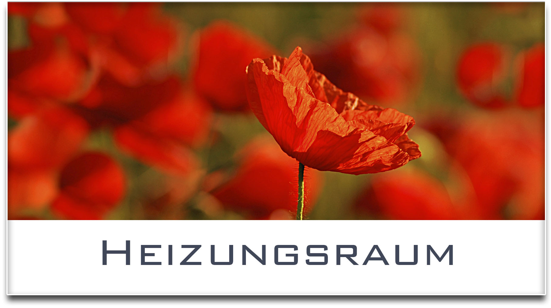 Türschild / Haustürschild / Mohnfeld / Heizungsraum / Selbstklebend