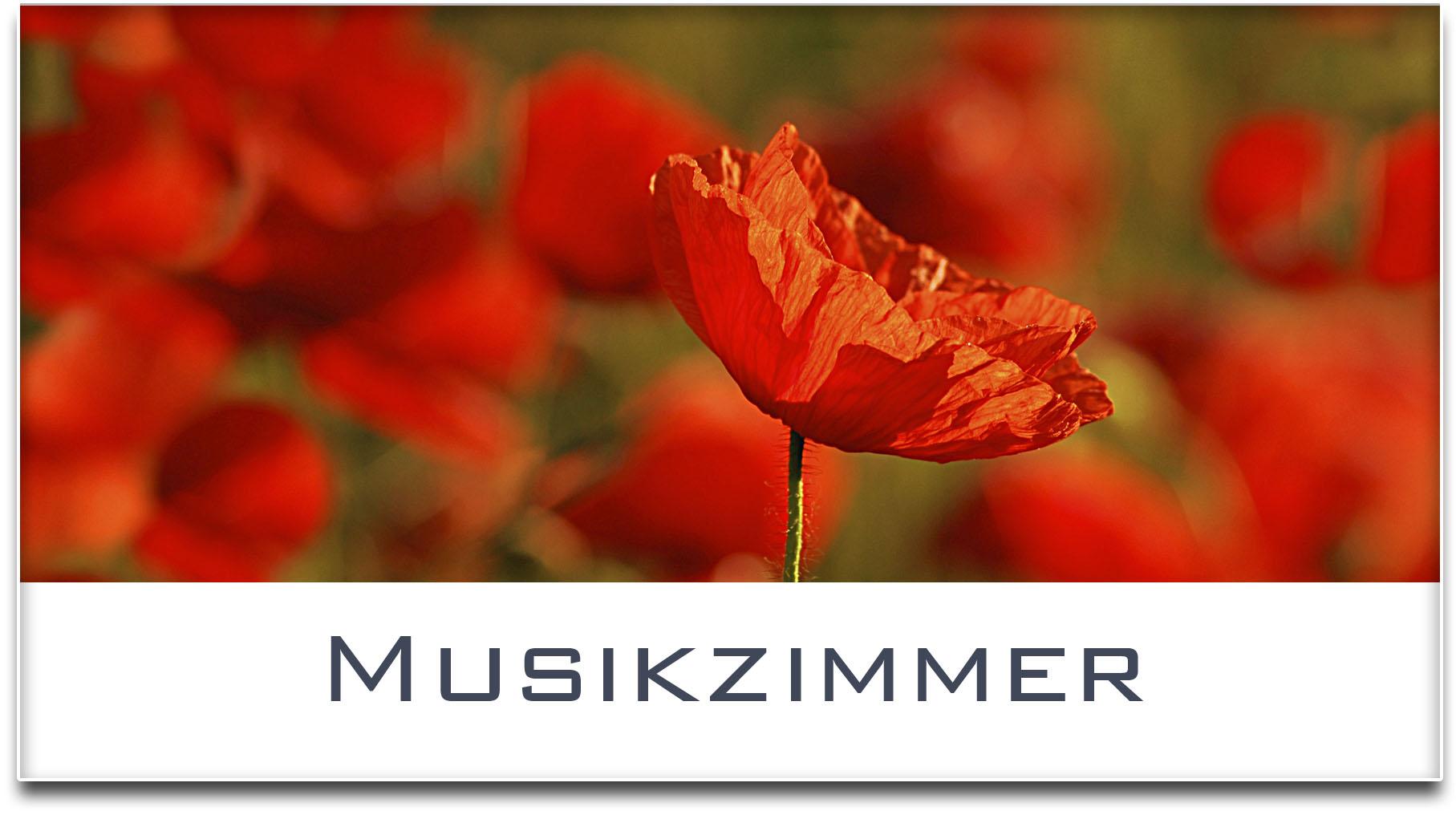Türschild / Haustürschild / Mohnfeld / Musikzimmer / Selbstklebend