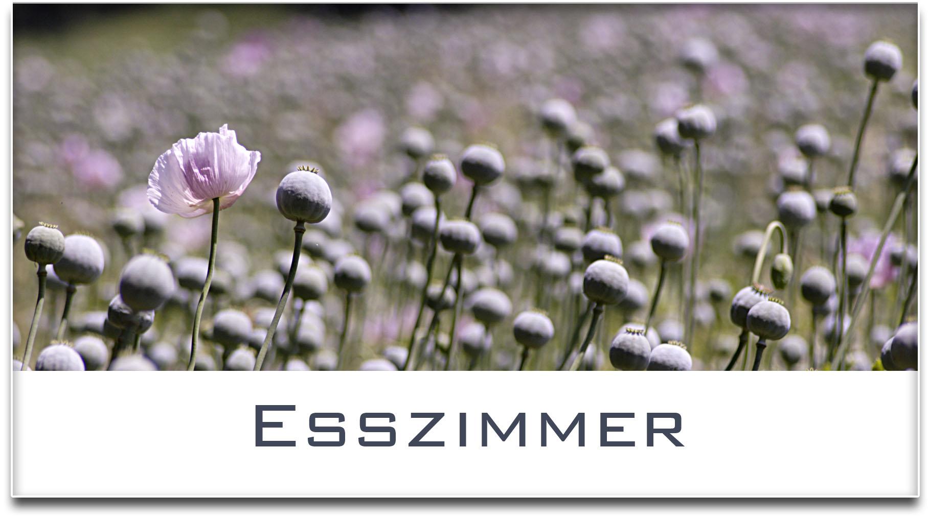 Türschild / Haustürschild / Mohnfeld / Esszimmer / Selbstklebend