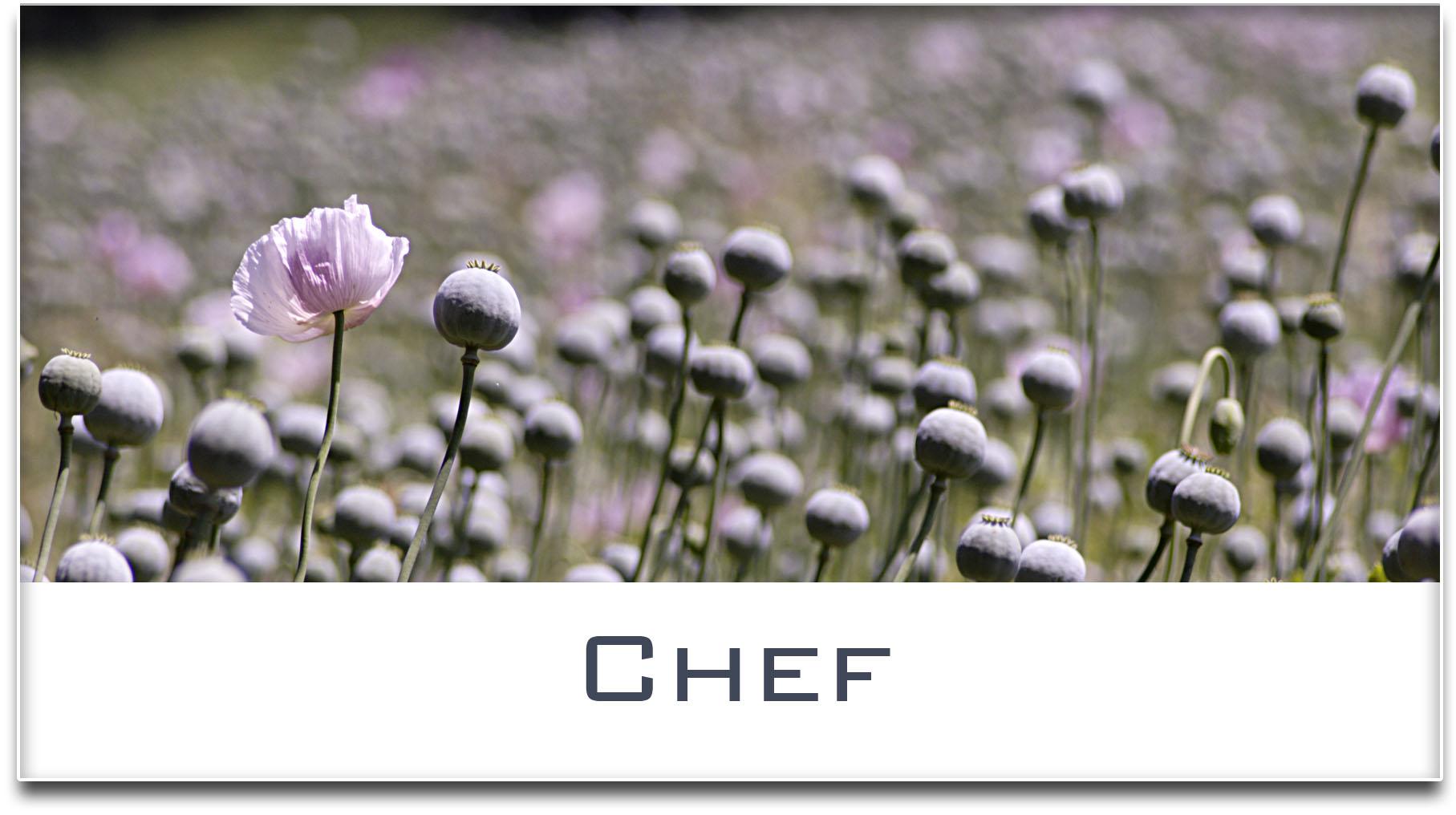 Türschild / Haustürschild / Mohnfeld / Chef / Selbstklebend