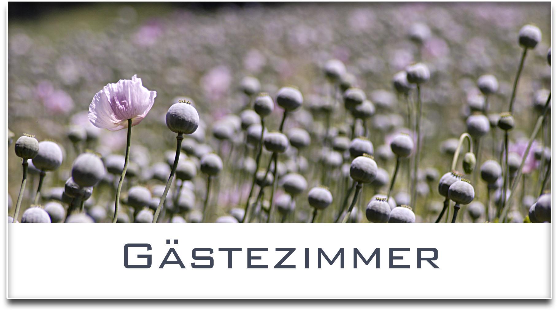 Türschild / Haustürschild / Mohnfeld / Gästezimmer / Selbstklebend