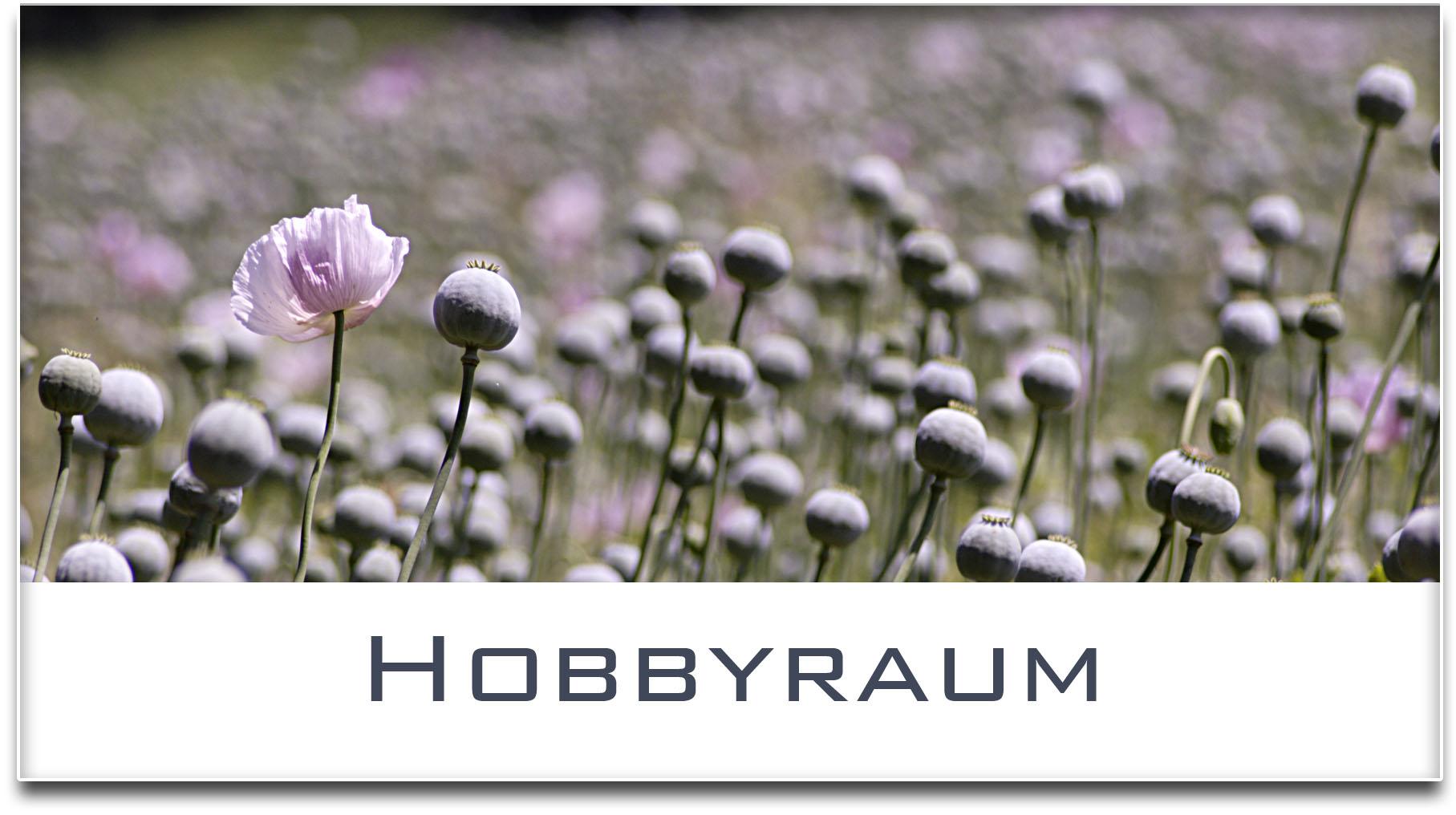 Türschild / Haustürschild / Mohnfeld / Hobbyraum / Selbstklebend