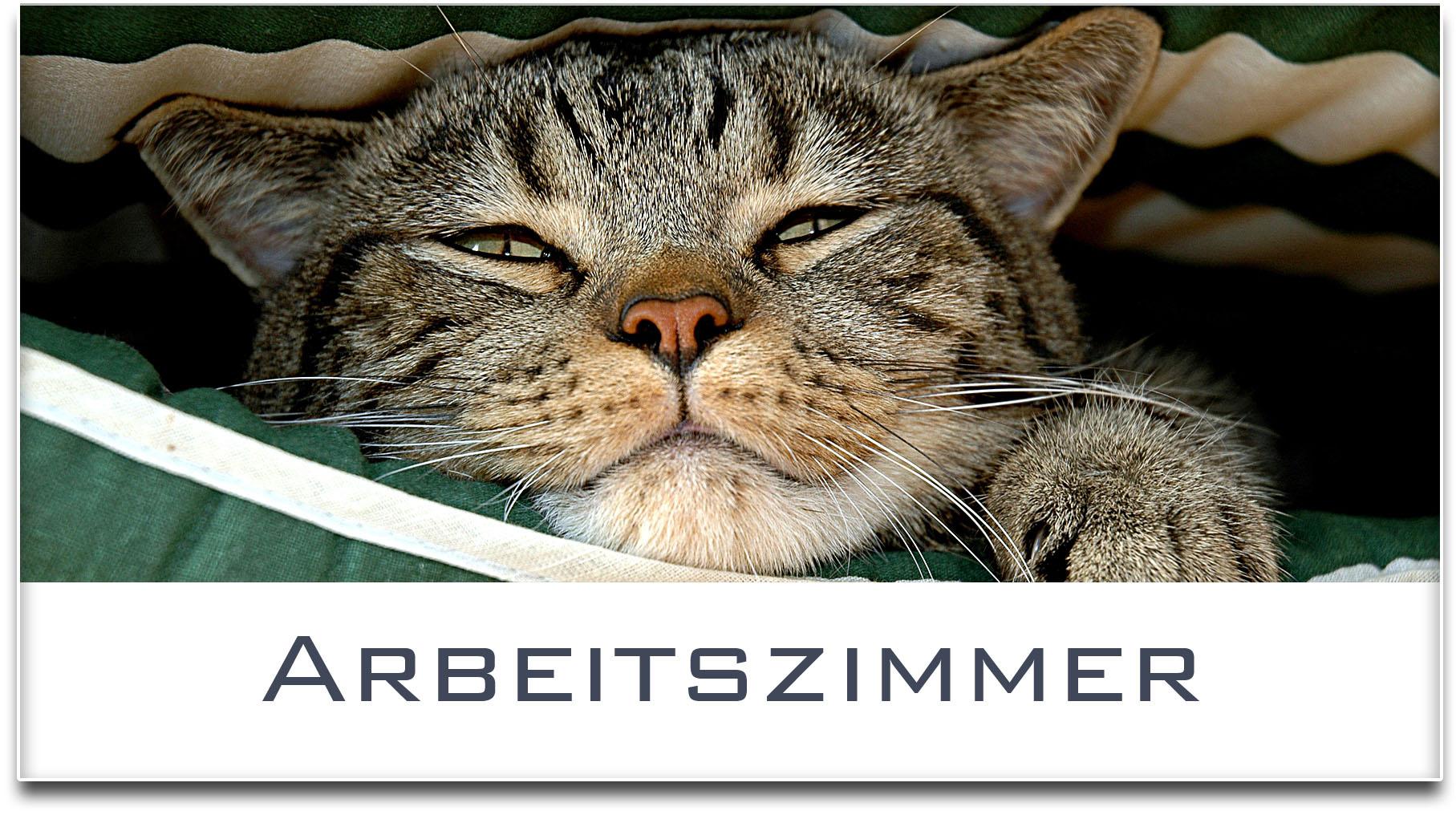 Türschild / Haustürschild / Katze / Arbeitszimmer / Selbstklebend