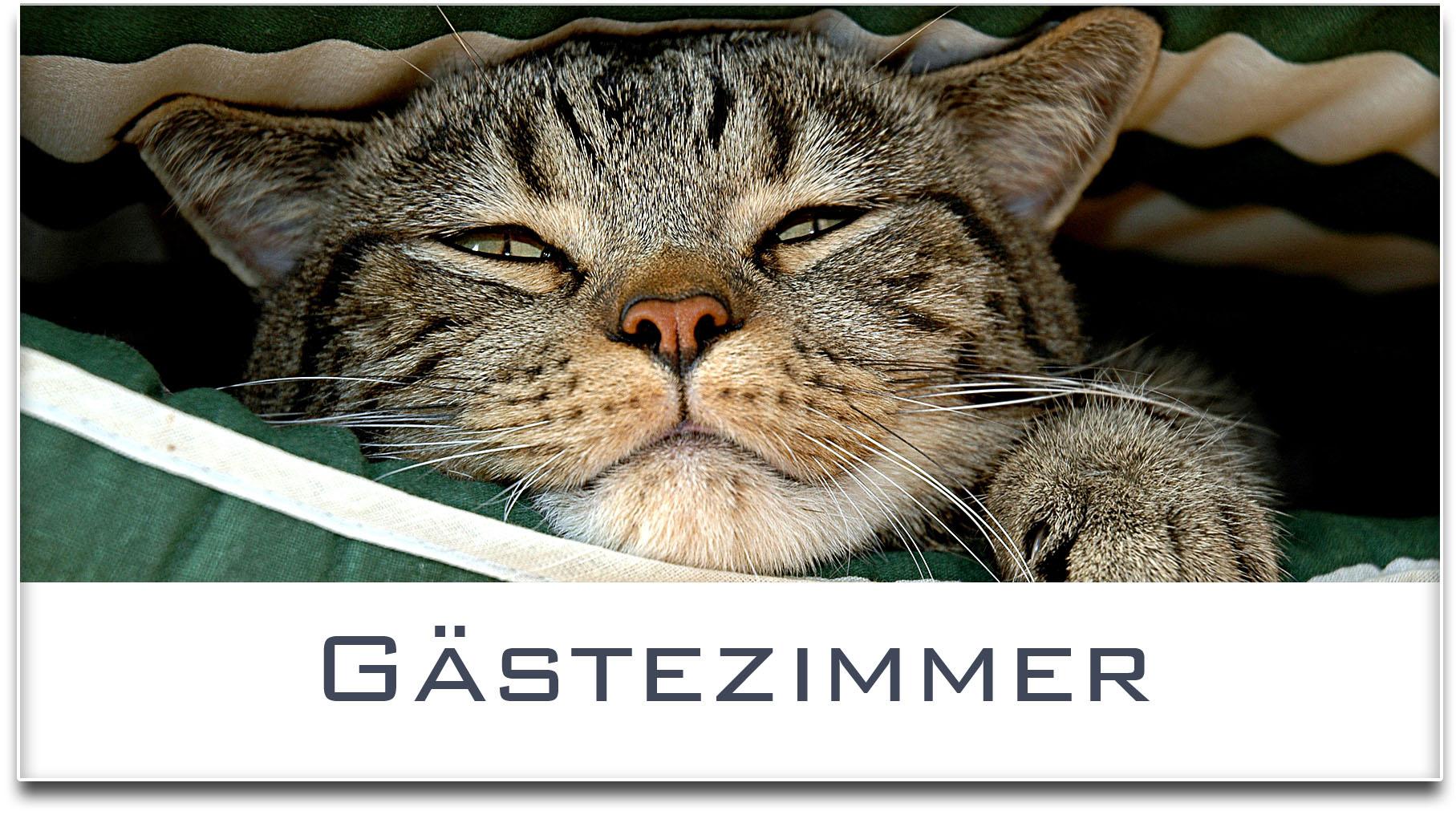 Türschild / Haustürschild / Katze / Gästezimmer / Selbstklebend