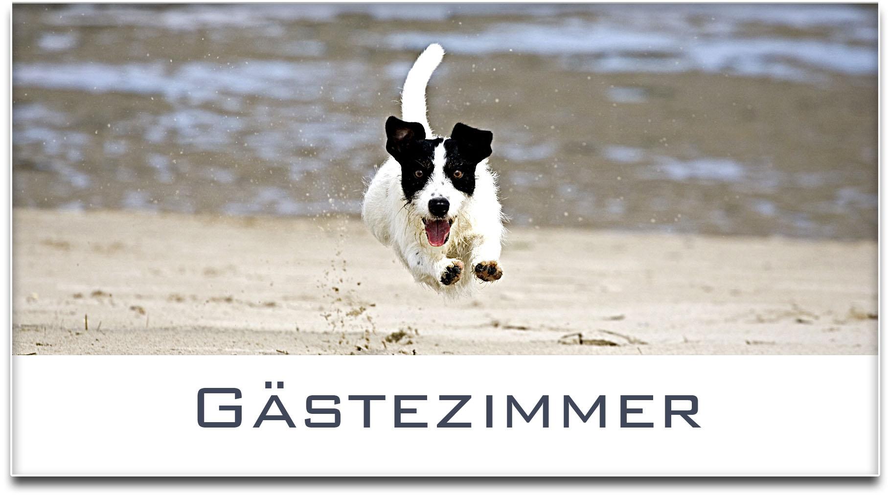 Türschild / Jack Russel Terrier / Hund / Gästezimmer / Selbstklebend