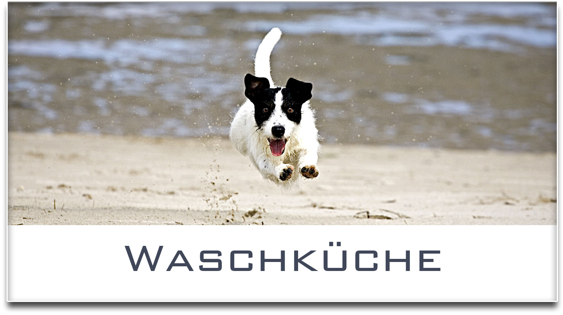 Türschild / Jack Russel Terrier / Hund / Waschküche / Selbstklebend