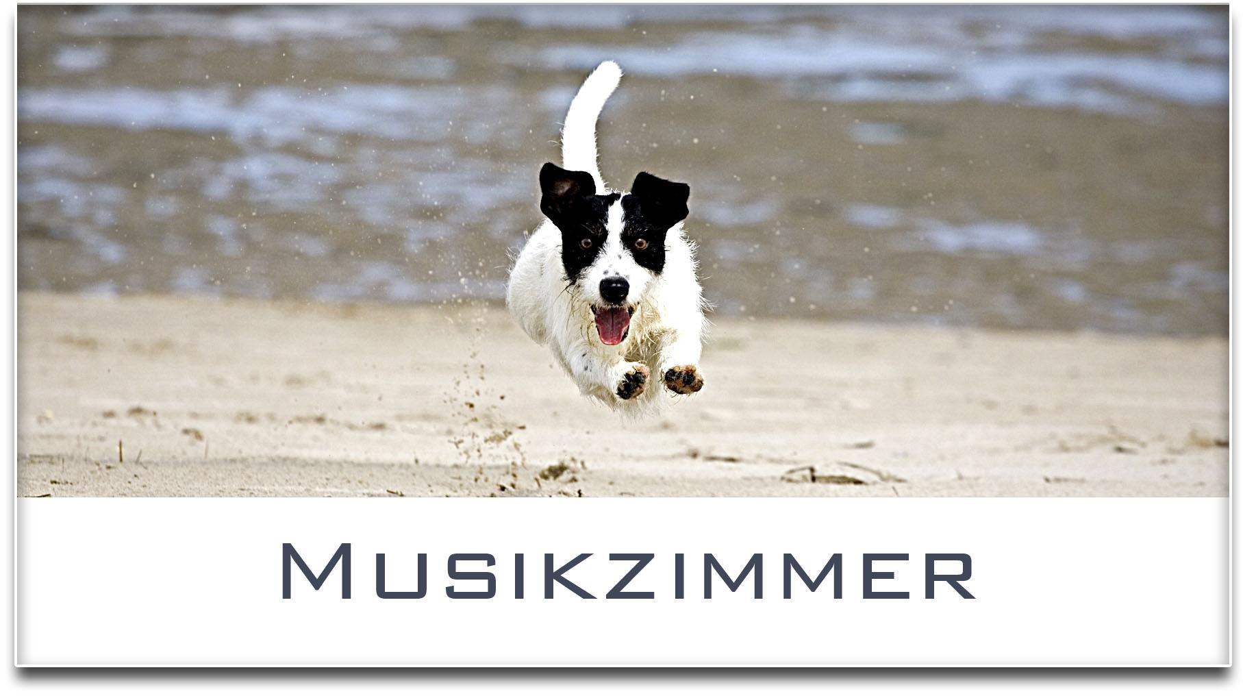 Türschild / Jack Russel Terrier / Hund / Musikzimmer / Selbstklebend