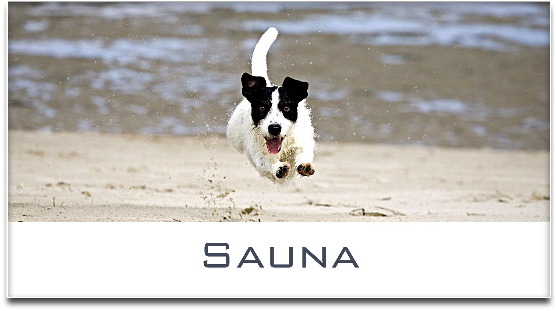 Türschild / Haustürschild / Jack Russel Terrier / Hund / Sauna / Selbstklebend